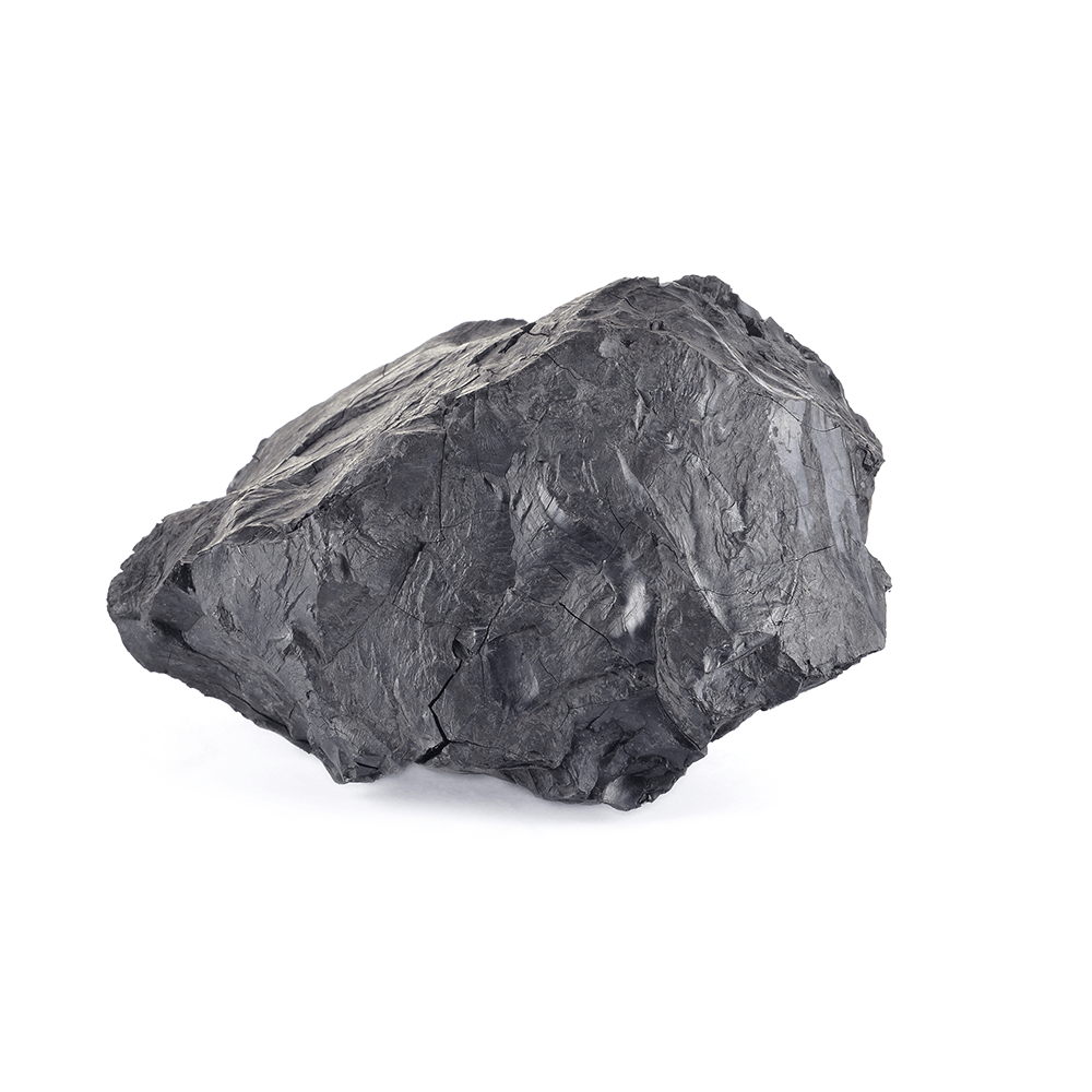 Steinkull (Bituminous coal)